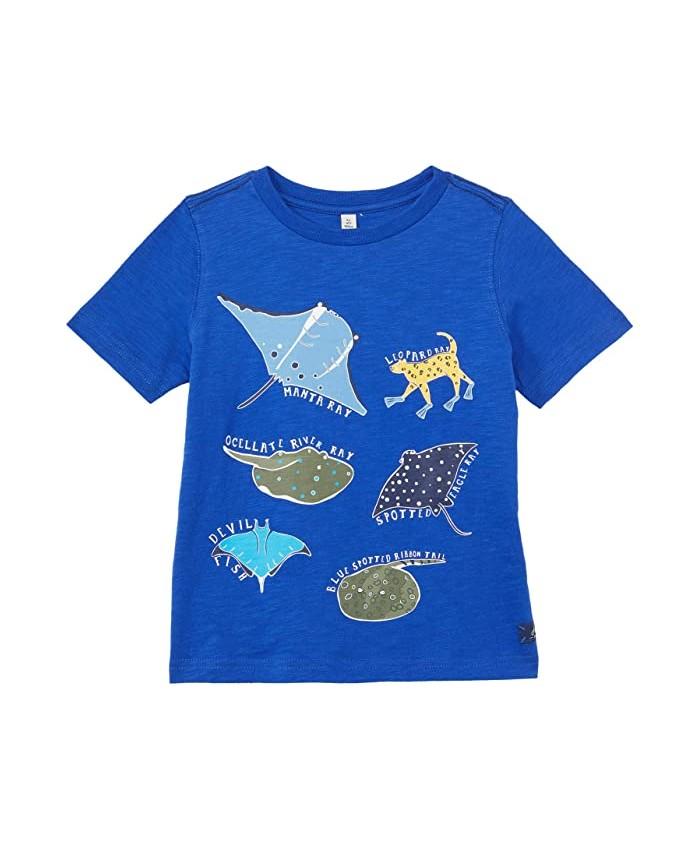 Joules Kids Ray T-Shirt (Toddler\u002FLittle Kids\u002FBig Kids)